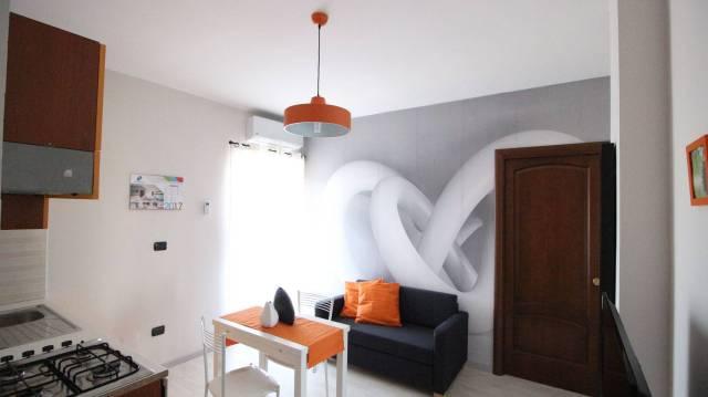 Appartamento in ottime condizioni arredato in affitto Rif. 6012530