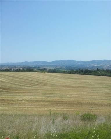 Terreno Edificabile Residenziale in vendita a Rosciano, 9999 locali, prezzo € 87.500 | Cambio Casa.it
