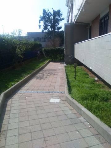 Appartamento in ottime condizioni in affitto Rif. 5068778