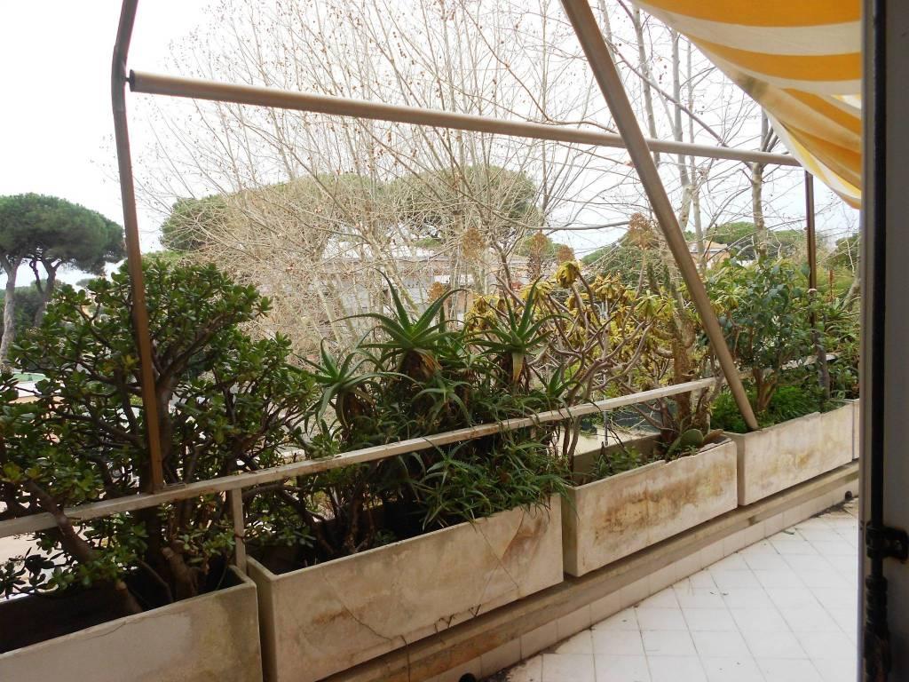 Appartamento in buone condizioni arredato in affitto Rif. 8156155