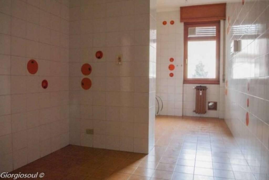 Appartamento in buone condizioni in affitto Rif. 8831375