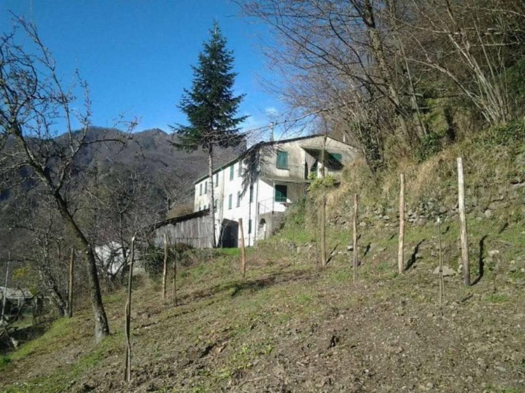 Soluzione Indipendente in vendita a Favale di Malvaro, 20 locali, prezzo € 40.000 | CambioCasa.it