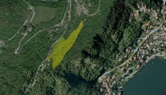 Terreno Agricolo in vendita a Moltrasio, 9999 locali, prezzo € 350.000 | CambioCasa.it