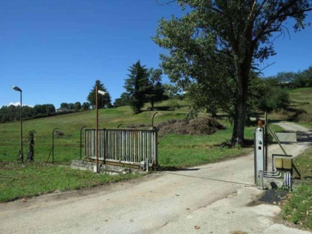 Terreno Edificabile Artigianale in vendita a Paliano, 9999 locali, prezzo € 1.500.000 | CambioCasa.it