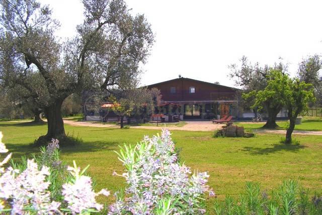 Albergo in vendita a Canino, 6 locali, prezzo € 1.500.000   Cambio Casa.it