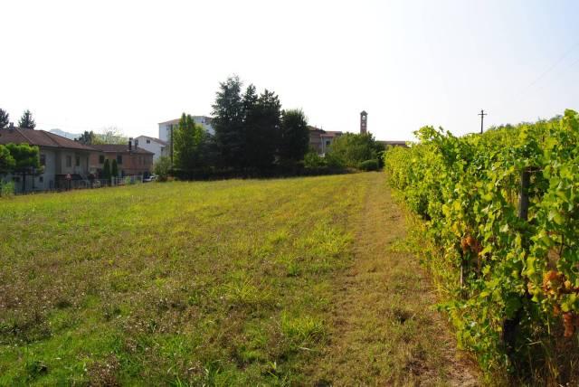 Terreno Edificabile Artigianale in vendita a Mombaruzzo, 9999 locali, prezzo € 70.000 | CambioCasa.it