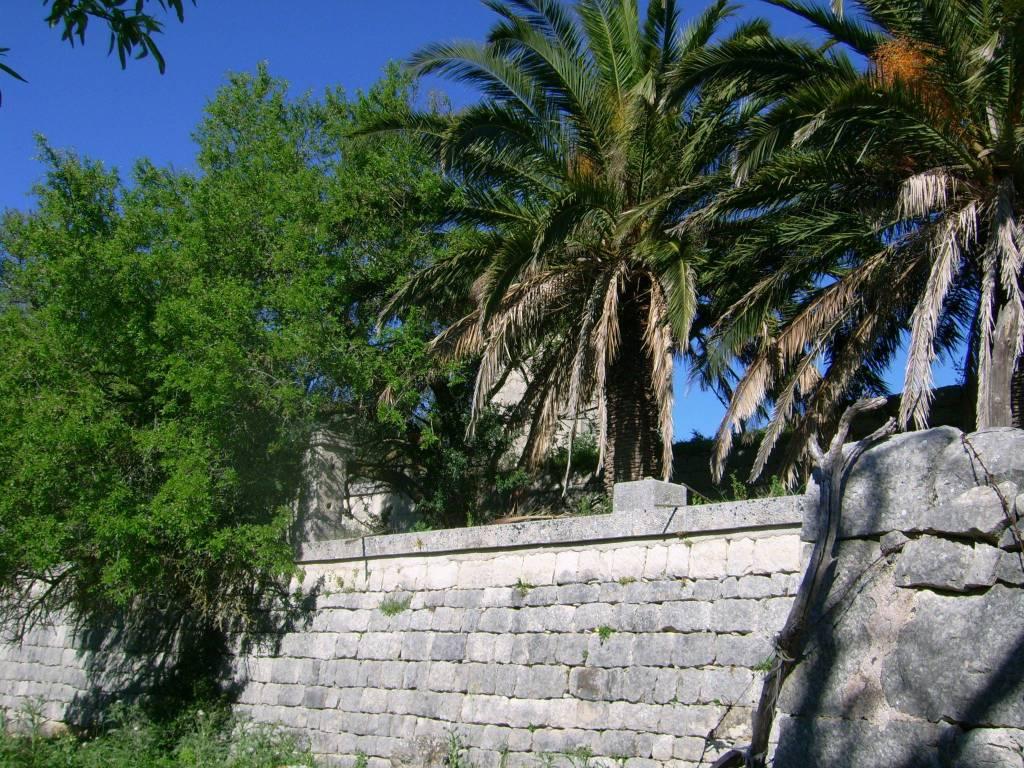 Attivita'-licenza in Vendita a Ragusa Periferia Nord: 110000 mq