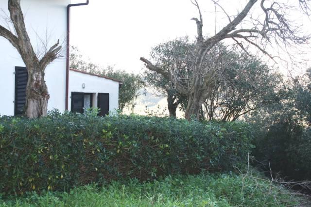 Casa Indipendente parzialmente arredato in vendita Rif. 4992690