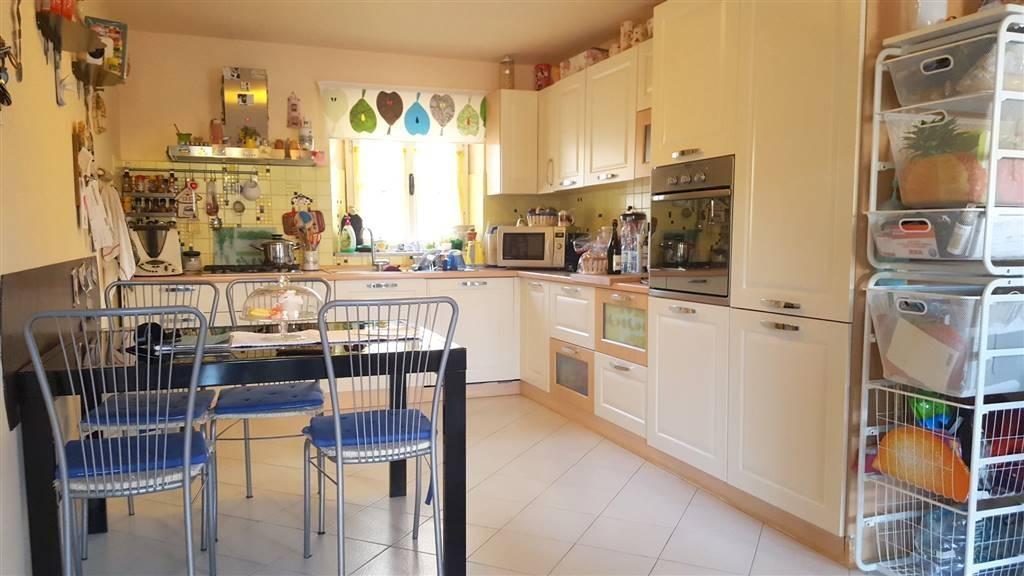 Appartamento in ottime condizioni arredato in vendita Rif. 8427953