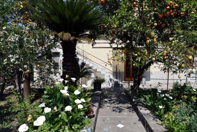 Appartamento in Vendita Sorrento in provincia di Napoli