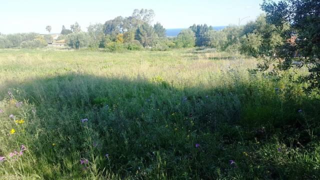 Terreno edificabile in vendita a pochi km da Tropea