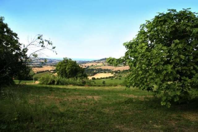 Terreno Edificabile Residenziale in vendita a Montelupone, 9999 locali, prezzo € 140.000   CambioCasa.it