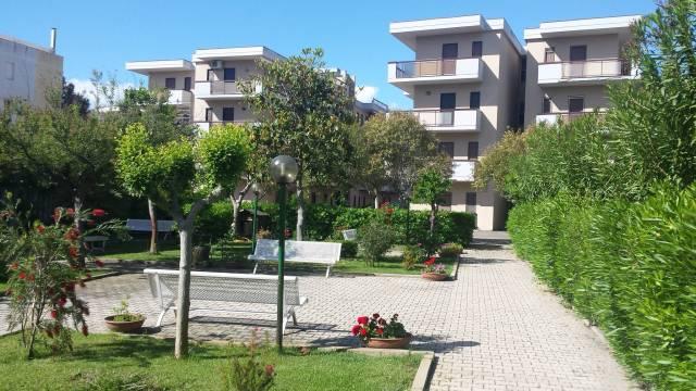 Appartamento in buone condizioni arredato in affitto Rif. 4983753
