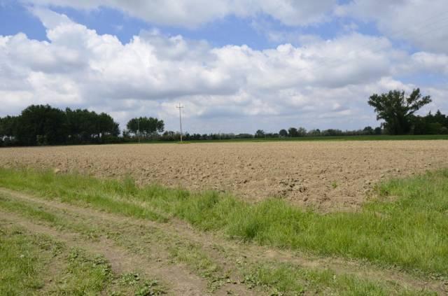 SAN CANZIAN D'ISONZO - PIERIS: terreno agricolo seminativo