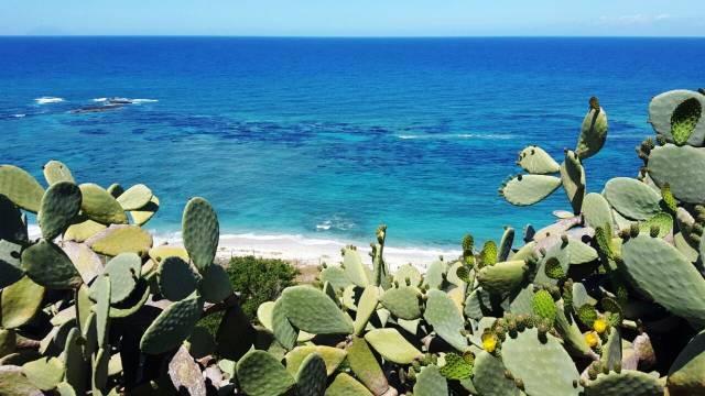 A 2 km dal centro di Tropea e a 1 km dal centro di Santa Dom Rif.8450647