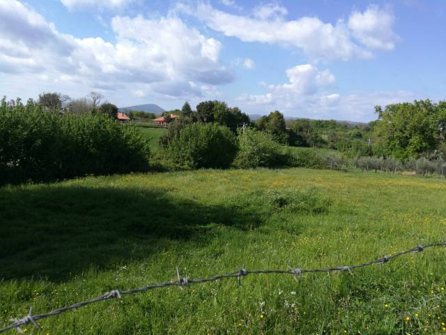 Terreno Edificabile Residenziale in Vendita a Bassano Romano