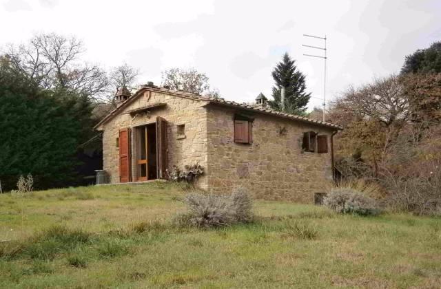 Rustico-casale Altro in Vendita a Monte San Savino