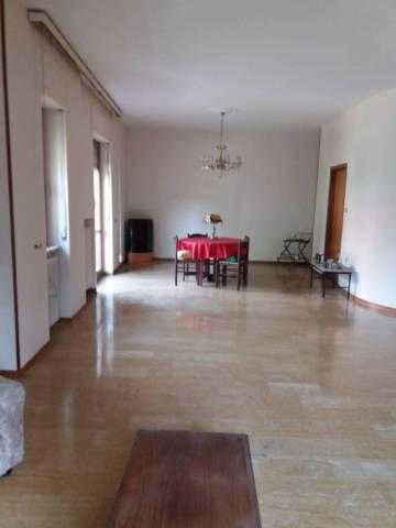 Appartamento, Pacifici, Centro città, Affitto - Ascoli Piceno (Ascoli Piceno)