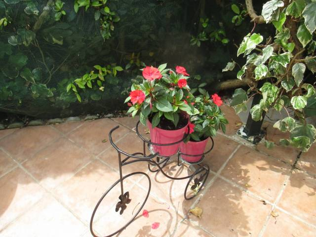 Rustico / Casale in Vendita a Castelnuovo del Garda