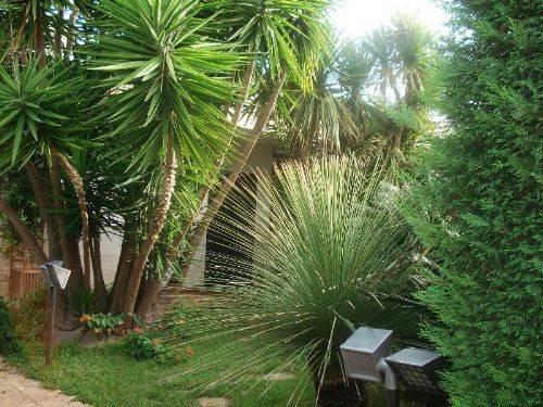 Casa vacanze in Puglia ,villaggio Rivamarina, foto 6