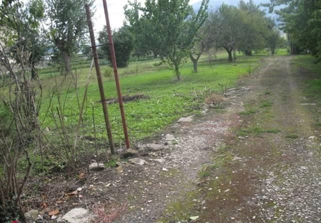 Terreno Commerciale in Vendita a Montesarchio Rif.10826582