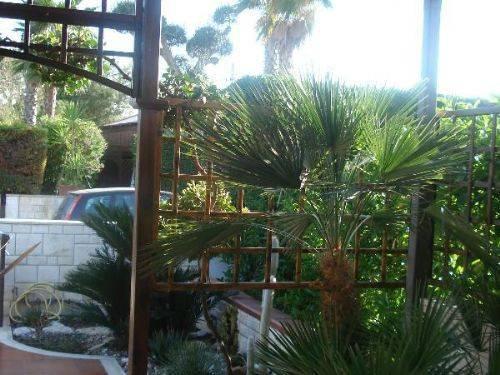 Casa vacanze a Marina di Carovigno, Specchiolla, foto 11