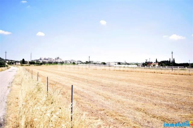 Terreno agricolo a 300 m dal centro abitato Rif. 4193706