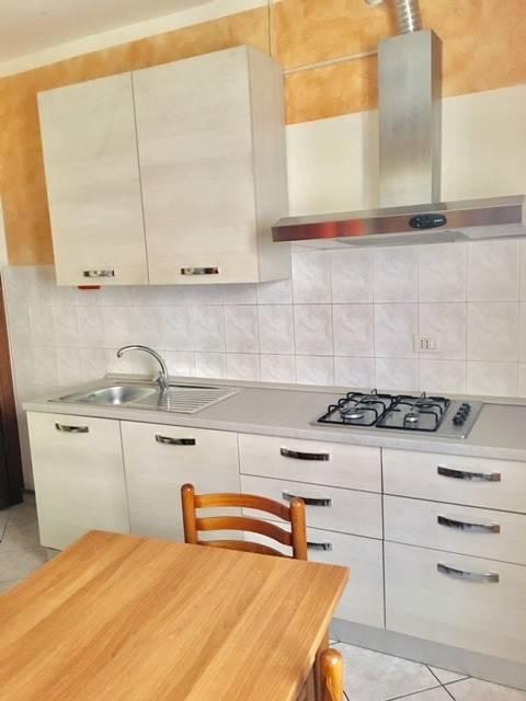 Appartamento in ottime condizioni arredato in affitto Rif. 9243184