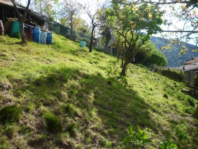 Terreno edificabile in vendita a Casargo (LC)