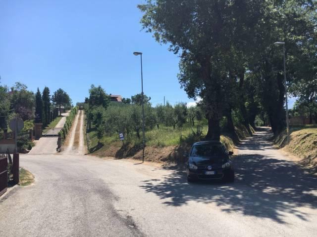 Terreno edificabile/agricolo in Contrada Collevecchio