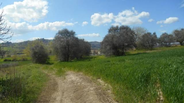 Bilocale Castelbellino  6