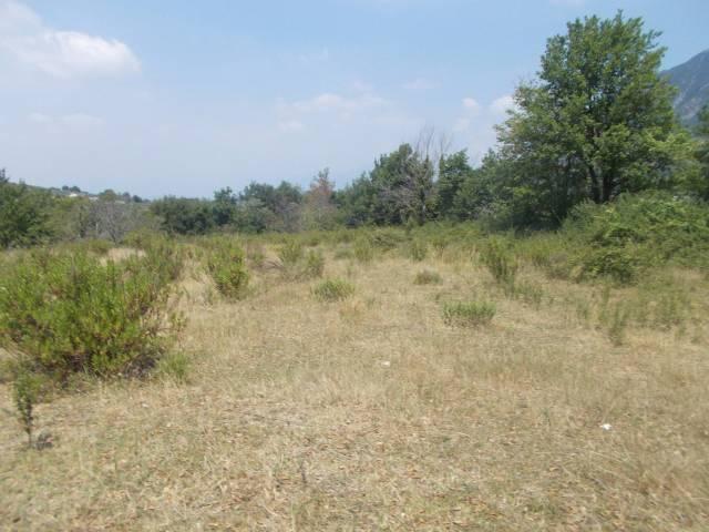 Terreno agricolo incolto pianeggiante Rif.11177161