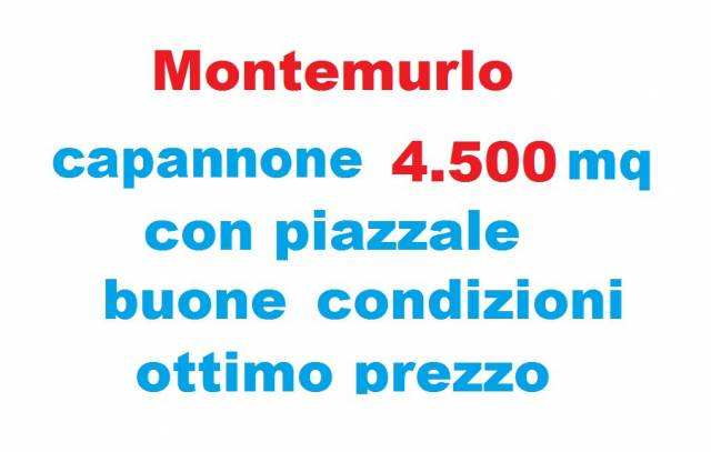 capannone Vendita Montemurlo
