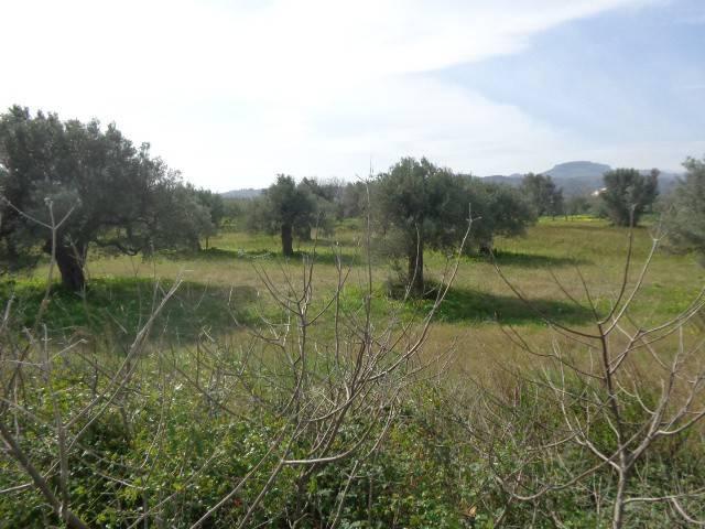 Terreno Edificabile Artigianale in vendita a Gioiosa Ionica, 9999 locali, Trattative riservate   CambioCasa.it