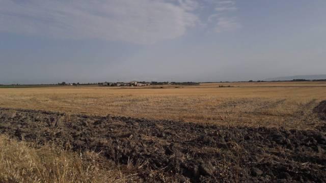 Terreno agricolo in vendita a Foggia (FG)