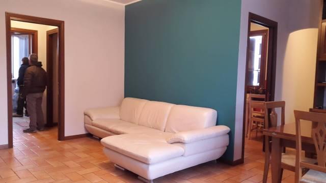 Appartamento quadrilocale in affitto a Castelvetro di Modena (MO)