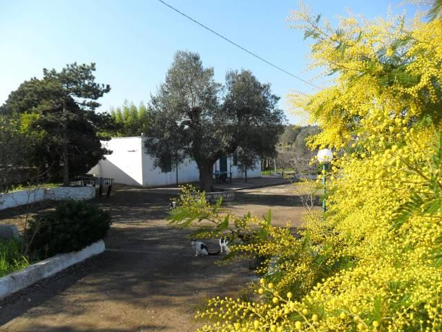 Villa in buone condizioni in vendita Rif. 4972514