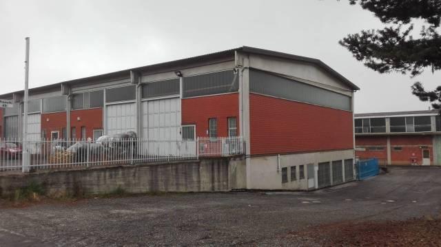 Immagine immobiliare Alpignano zona industriale Affittiamo, ( la proprietà valuta anche la vendita ) Capannone industriale, di 425 mq, di cui : area operativa di 350 mq circa, 75 mq uffici, Passo carraio altezza 4 mt, altezza interna 5 mt circa,...