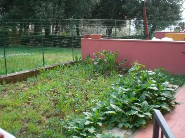 Appartamento in affitto a Pescia, 2 locali, prezzo € 350 | Cambio Casa.it