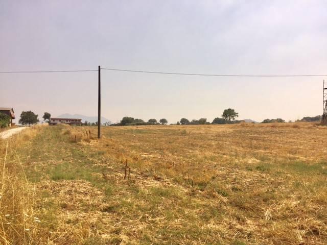 Terreno Commerciale in Vendita a Venticano Rif.7722930
