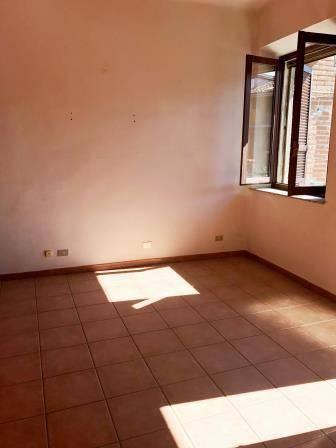 Appartamento in ottime condizioni in affitto Rif. 4186492