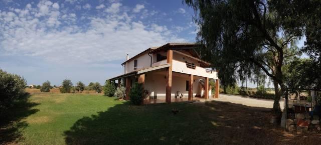 Vendesi Casale - Vicinanze di Orbetello - San Donato