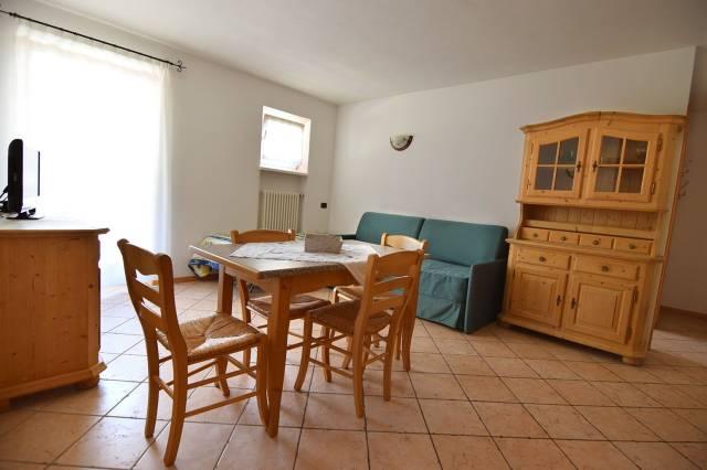 Appartamento in buone condizioni arredato in vendita Rif. 5002502