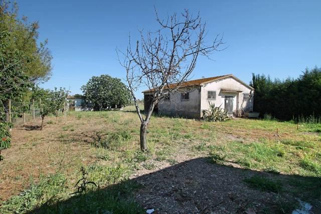 Rustico / Casale da ristrutturare in vendita Rif. 4254657