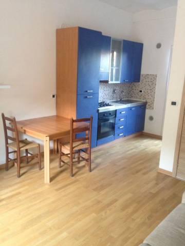 Appartamento in ottime condizioni arredato in affitto Rif. 7280332