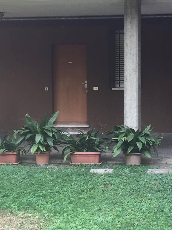 Appartamento in buone condizioni in affitto Rif. 7758540