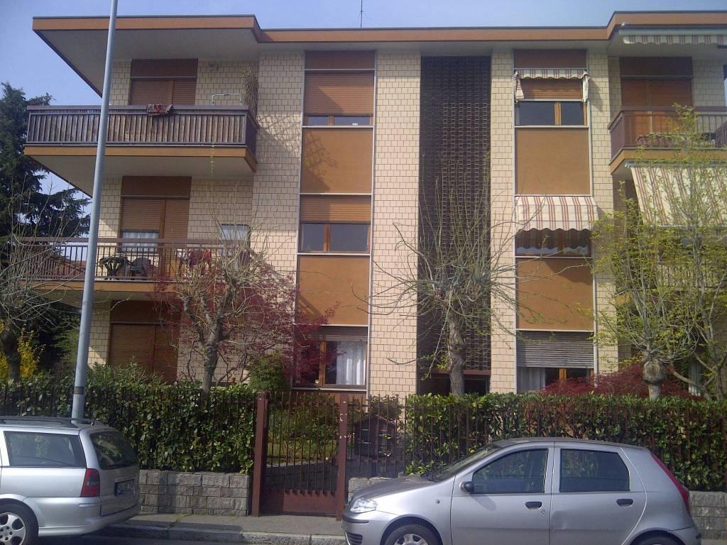 Appartamento in buone condizioni arredato in affitto Rif. 7361999