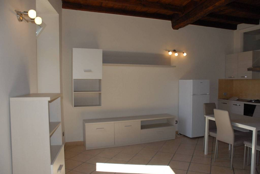 Appartamento in ottime condizioni arredato in affitto Rif. 8411567