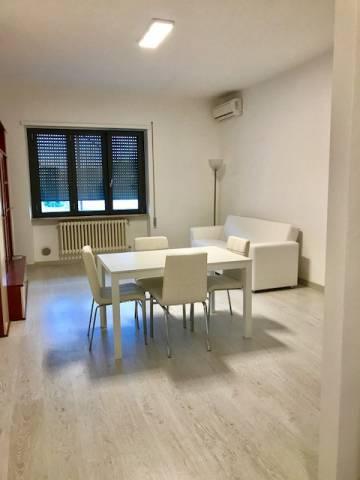 Appartamento trilocale in affitto a Frosinone (FR)