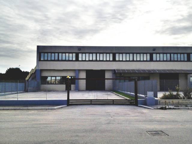 Capannone con 2 uffici in Via Manfredonia Rif. 5029366